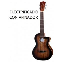 H. BENTON ELECTRIFICADO